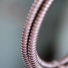 Curled Coils by Gary Chapple