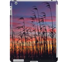 As the Wind Blows iPad Case/Skin