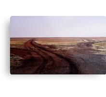 Two Roads Two Roos and too Far Metal Print