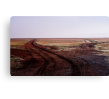 Two Roads Two Roos and too Far Canvas Print