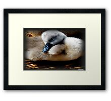 Sleepy Head Framed Print