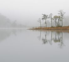 Loch Ard Misty Morning in Autumn by Maria Gaellman