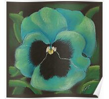 Green Pansy Poster