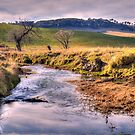 Somewhere  - near Oberon NSW Australia - The HDR Experience by Philip Johnson