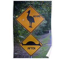 Be Aware of Cassowary! Poster