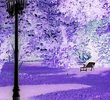 """A Romantic Bavarian Beergarden featured in """"A fascinating purple"""" by ©The Creative  Minds"""