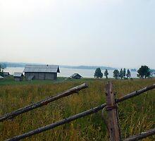 Rural landscape by Eduard Isakov