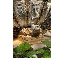 Longwood Details Photographic Print