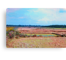The Rice Paddy Canvas Print
