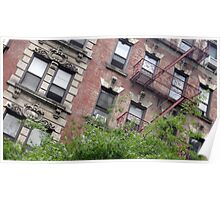 Windows and Fire Escapes Poster