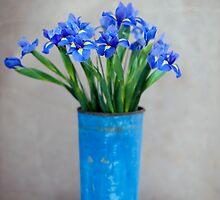 Iris Flower by Elena Ray