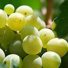 green grapes by milena boeva