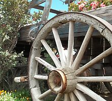 Wheels And Blooms by Glenn McCarthy