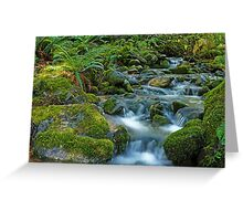 Mount Rainier Wildnerness Area. Greeting Card