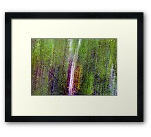 The Forest Matrix. Framed Print