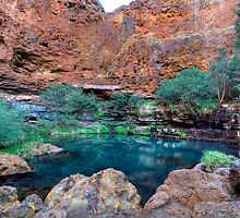 Circular Pool in Dales Gorge - Karijini National Park - WA by Alwyn Simple