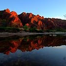 First Light Reflections - Picininny Creek - Bungles. by Alwyn Simple