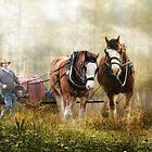 The Tractor Pull by Trudi&#x27;s Images
