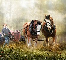The Tractor Pull by Trudi's Images