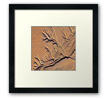 Tide Trails Framed Print