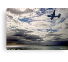 Is It Real Or Is It Memorex? Canvas Print