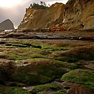 Cape Kiwanda Seascape by Nick Boren