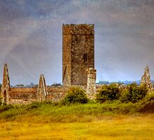 Ruins of a Grand Past - near Adare, Ireland by Mark Richards