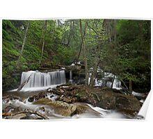 Delaware Falls Poster