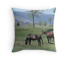 This is the Life ... Throw Pillow