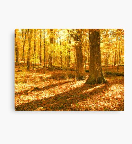 """Color Me Fall, 2""... prints and products Canvas Print"