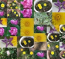 Collage of Flowers... by Sybleann
