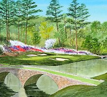 Augusta National Golf Course Hole 12 by bill holkham