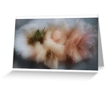 The Softness of Roses Greeting Card