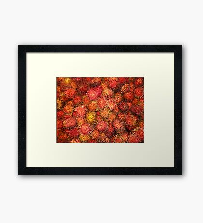 Rambutan - Exotic Fruit Framed Print