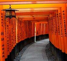 Tori Gates of Fushimi Inari Shrine by Dan Bronish
