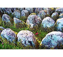 Arashi Cemetery  Photographic Print