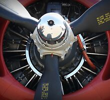 B-24 Prop by Tracy LeMaster