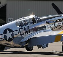 World War 2 P-51 Mustang by Tracy Freese