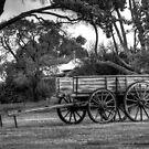 Old Wagon. by trevorb