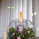 When night and morning meet, butterflies ... by kseniako