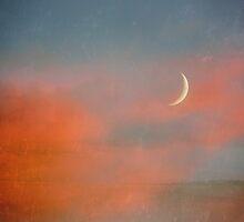 Sunset Moon by SRowe Art