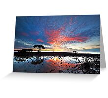 Tidal Twilight - Cleveland Point Qld Greeting Card