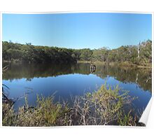 Bushland Park Lake Poster
