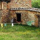 Laundry, Italian Style 2 by Deborah Downes