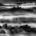 Mist on the Everton Hills by Kevin McGennan