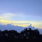 "Evening Sky by Scott ""Bubba"" Brookshire"
