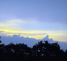 "Evening Sky by Scott ""Bubba"" Brookshire"