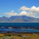 Table mountain from robben island by jozi1