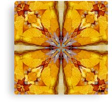Flakes Of Sunshine Canvas Print