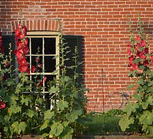 Hollyhocks in the Garden by Paula Betz